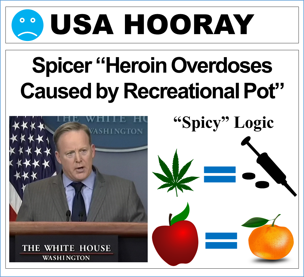 Spicer - Heroin Overdoses Caused by Recreational Pot